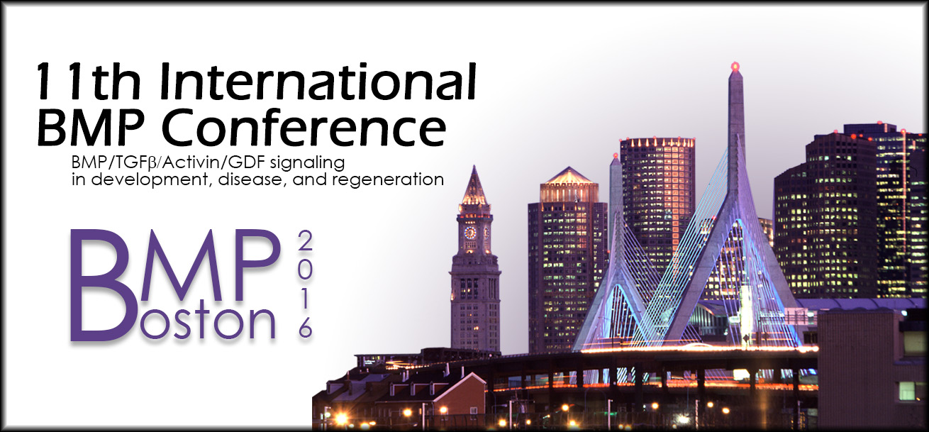 11th International BMP Conference