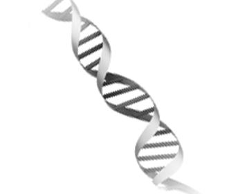 Epigenetics Journal Club