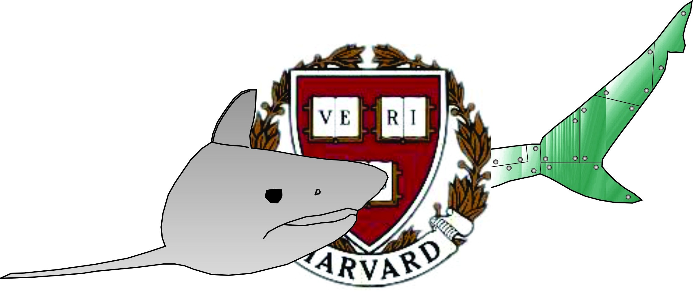 Fluid Locomotion research at Harvard University