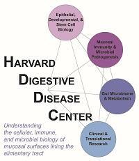 Harvard Digestive Disease Center