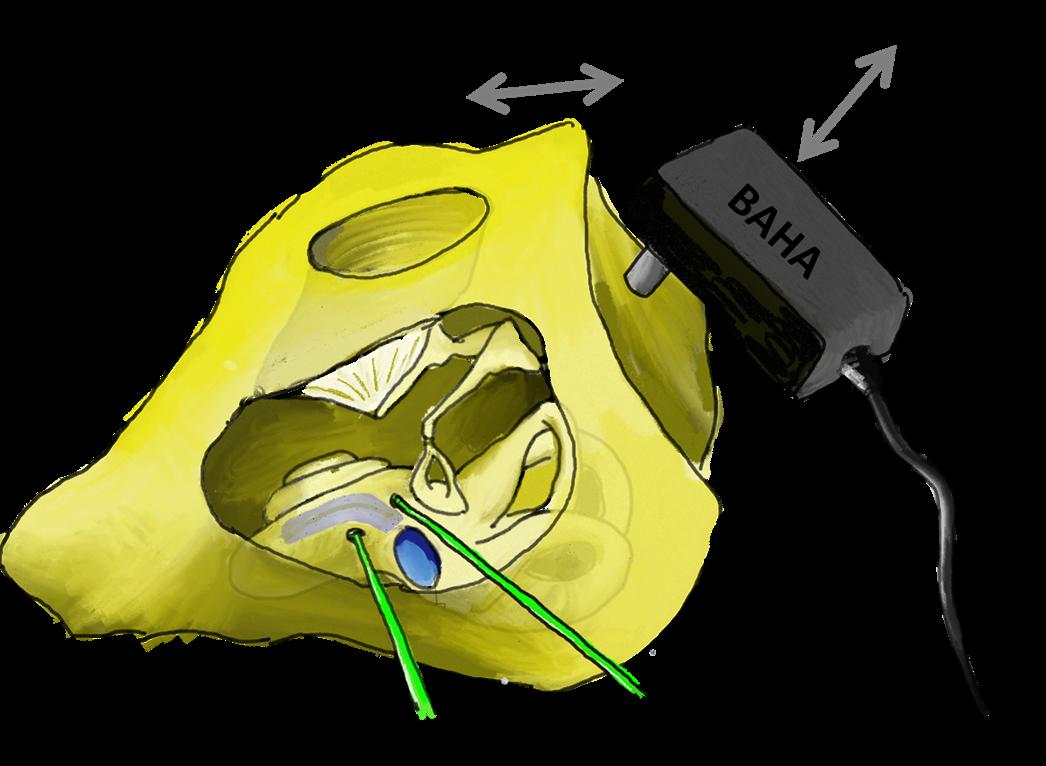 Nakajima Middle Ear Mechanics Lab