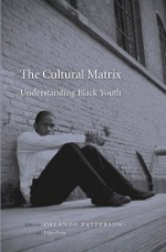 The Cultural Matrix : Understanding Black Youth