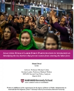 Understanding Female Labor Force Participation in Afghanistan, Government of Afghanistan