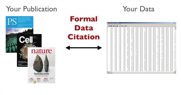 formal data citation