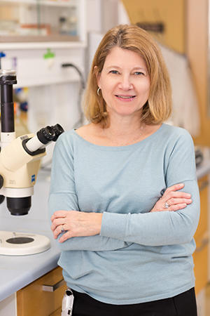 Dr. Patricia D'Amore in her lab