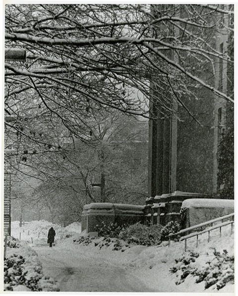 View of the walkway in front of Langdell Hall, date unknown