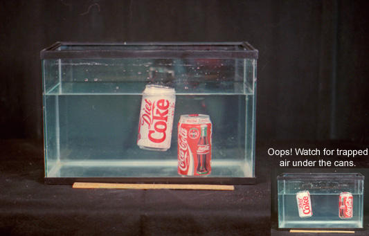 photo of fish tank with can of diet coke floating in it