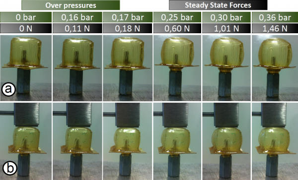Experimental validation of the mechanical properties