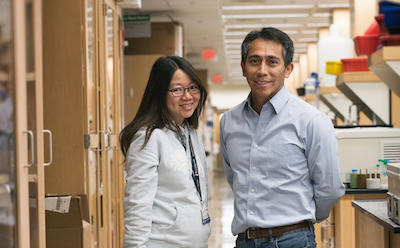 Lung and liver cancers: new findings | Harvard Stem Cell