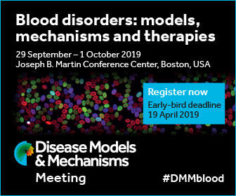 DMM Blood Disorders poster image