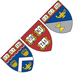 The three shields of DCE