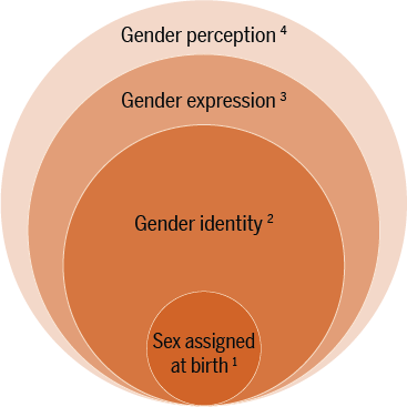 "A graph of 4 circles of increasing size all within one circle. Smallest circle is labeled ""sex assigned at birth,"" the 2nd is ""gender identity,"" the 3rd is ""gender expression,"" the 4th and largest circle is ""gender perception."""