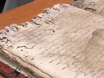 mold and insect damaged manuscript