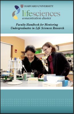 faculty handbook thumbnail