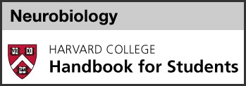 Neurobiology concentration harvard college handbook link
