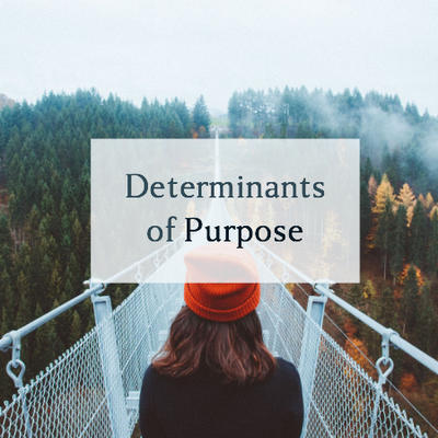 Determinants of purpose