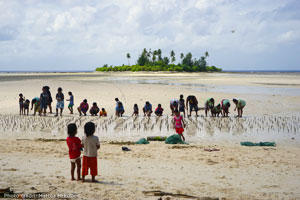 Image of children watching a mangrove planting