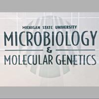 Michigan State Microbiology & Molecular Genetics