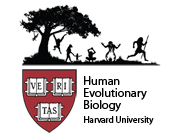 Dept. of Human Evolutionary Biology Logo