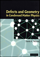 Defects and Geometry in Condensed Matter Physics - book cover