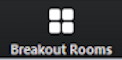 Breakout Room button
