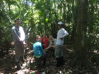 Panama 2016, group in jungle