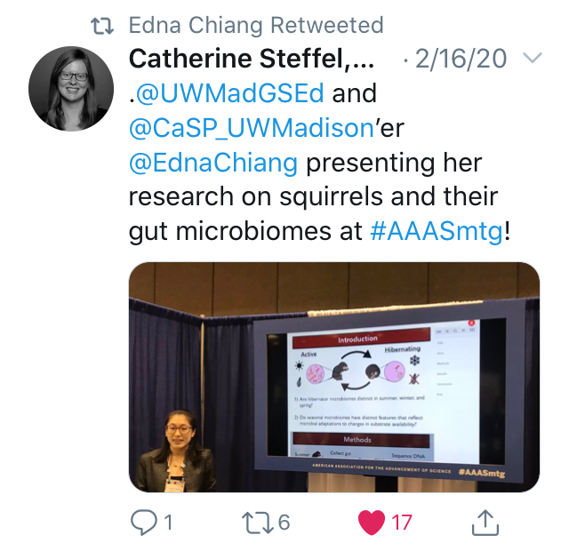 "Screenshot of a tweet by Catherine Steffel showing Edna Chiang presenting her AAAS poster. The tweet reads "".@UWMadsGSEd and @CaSP_UWMadison'er @EdnaChiang presenting her research on squirrels and their gut microbiomes at #AAASmtg!"""