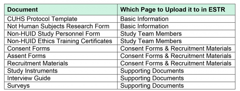 application review template