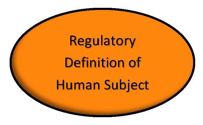 Human Definition