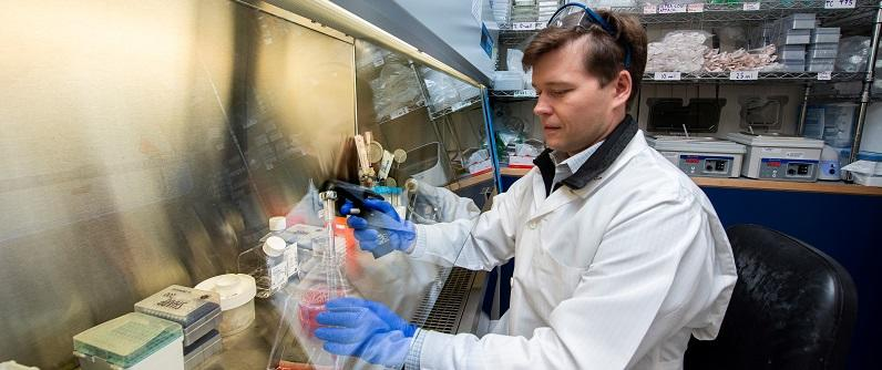 picture of petr baranov working in the lab