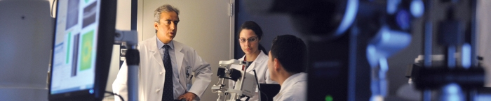 Harvard-Vision Clinical Scientist Development Program (K12)