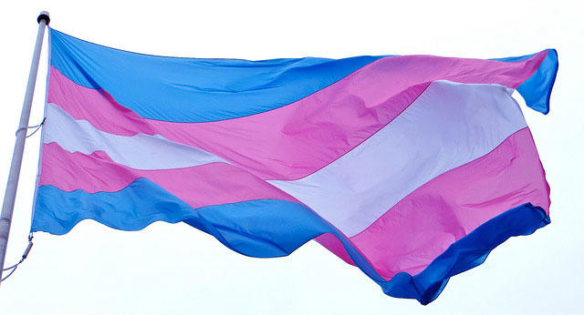 Trans pride flag against the sky.