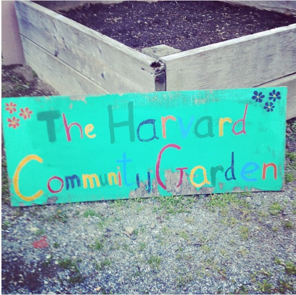 Harvard Community Garden Sign!