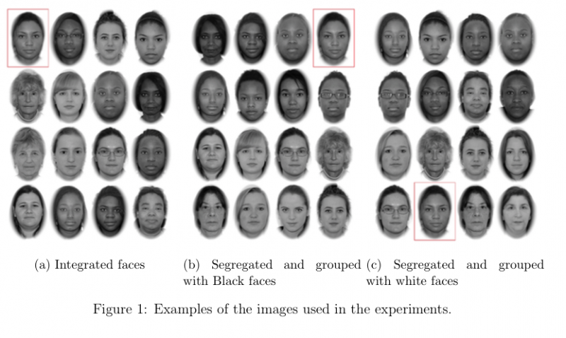 Figure 1: Examples of the images used in the experiments