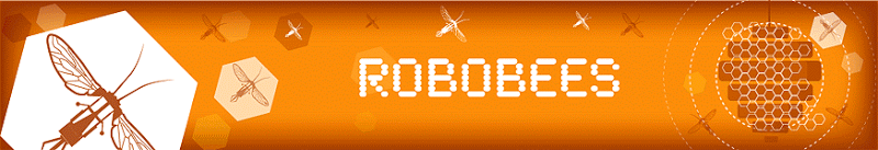 Robobee project banner