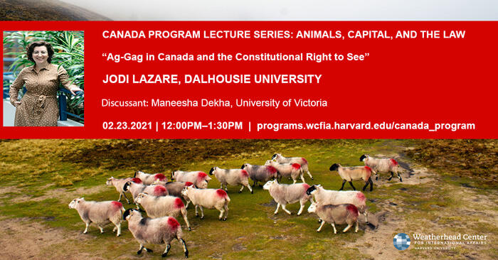 """Ag-Gag in Canada and the Constitutional Right to See"""