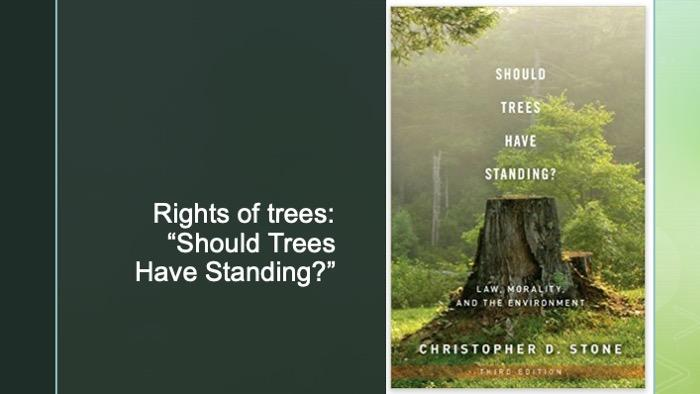 Slide of Christopher Stone's book cover
