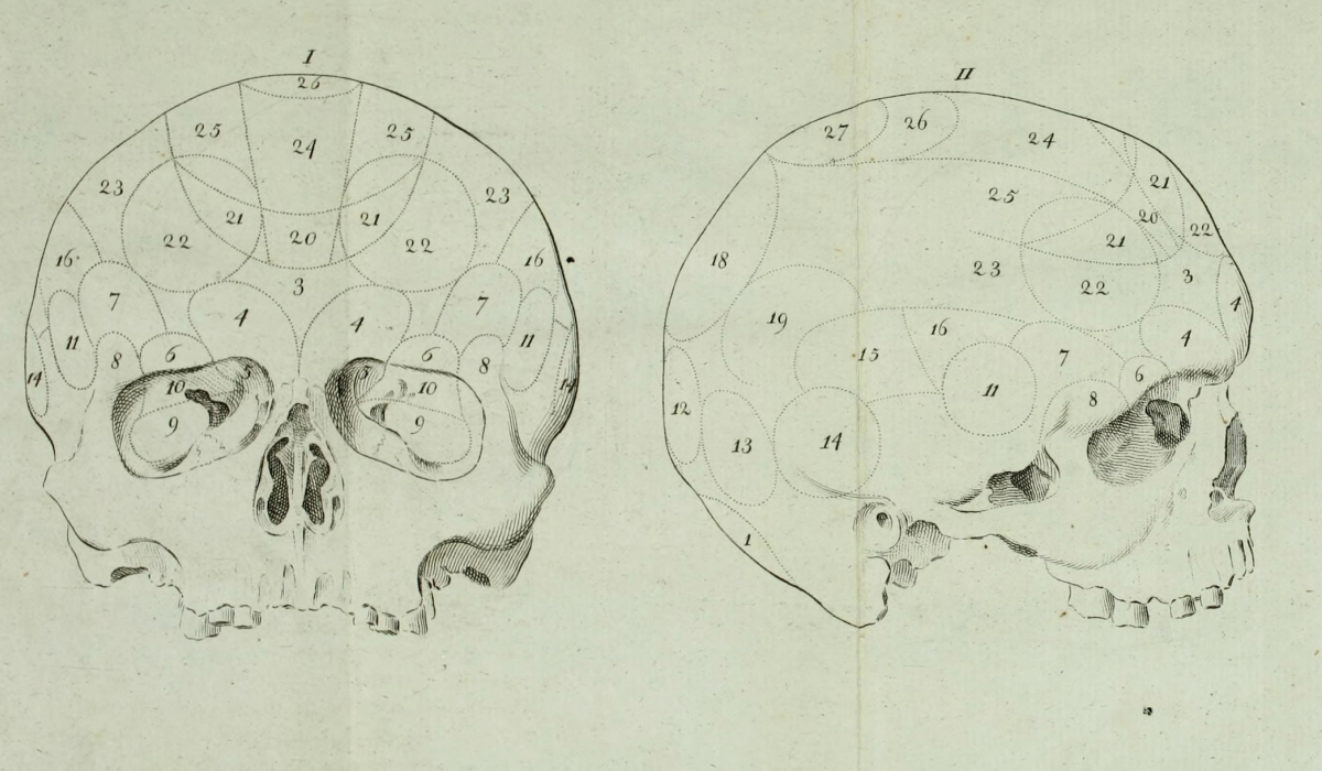 Phrenology sketch of skull, 1807