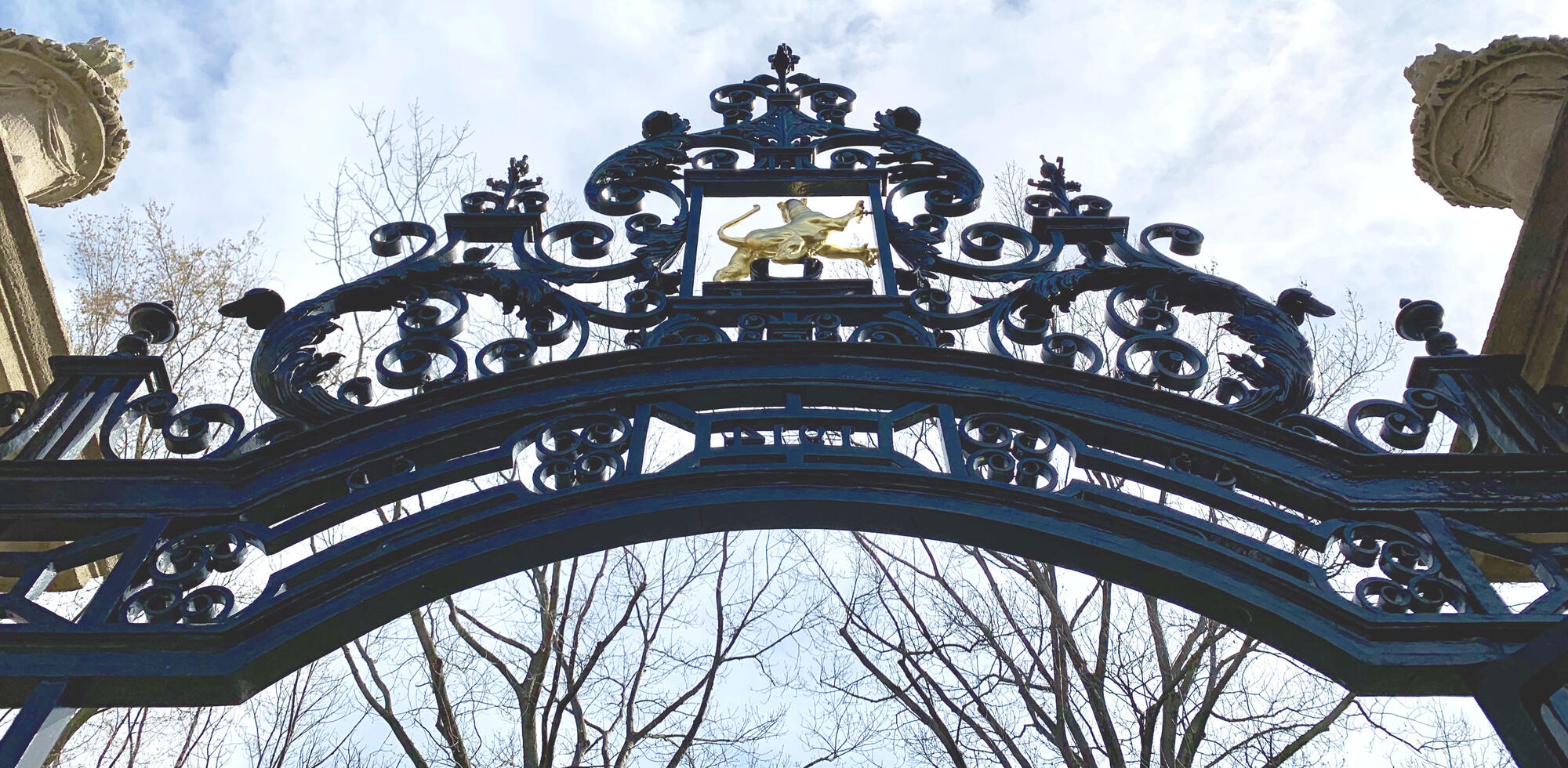 Gate at Harvard
