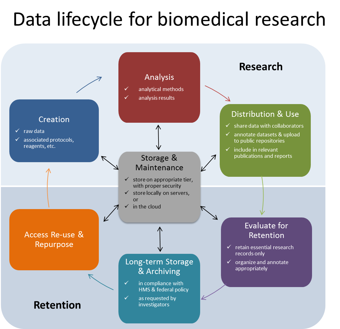 Data lifecycle for biomedical data with description of activities for every stage of the cycle.