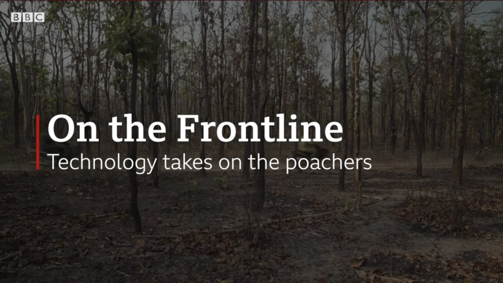Using technology to take on poachers