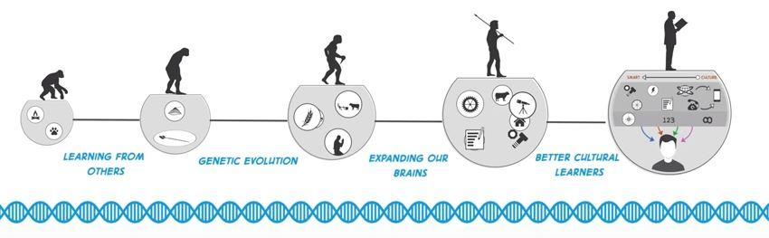 evolution questions Evolution questions and answers - discover the enotescom community of teachers, mentors and students just like you that can answer any question you might have on evolution.