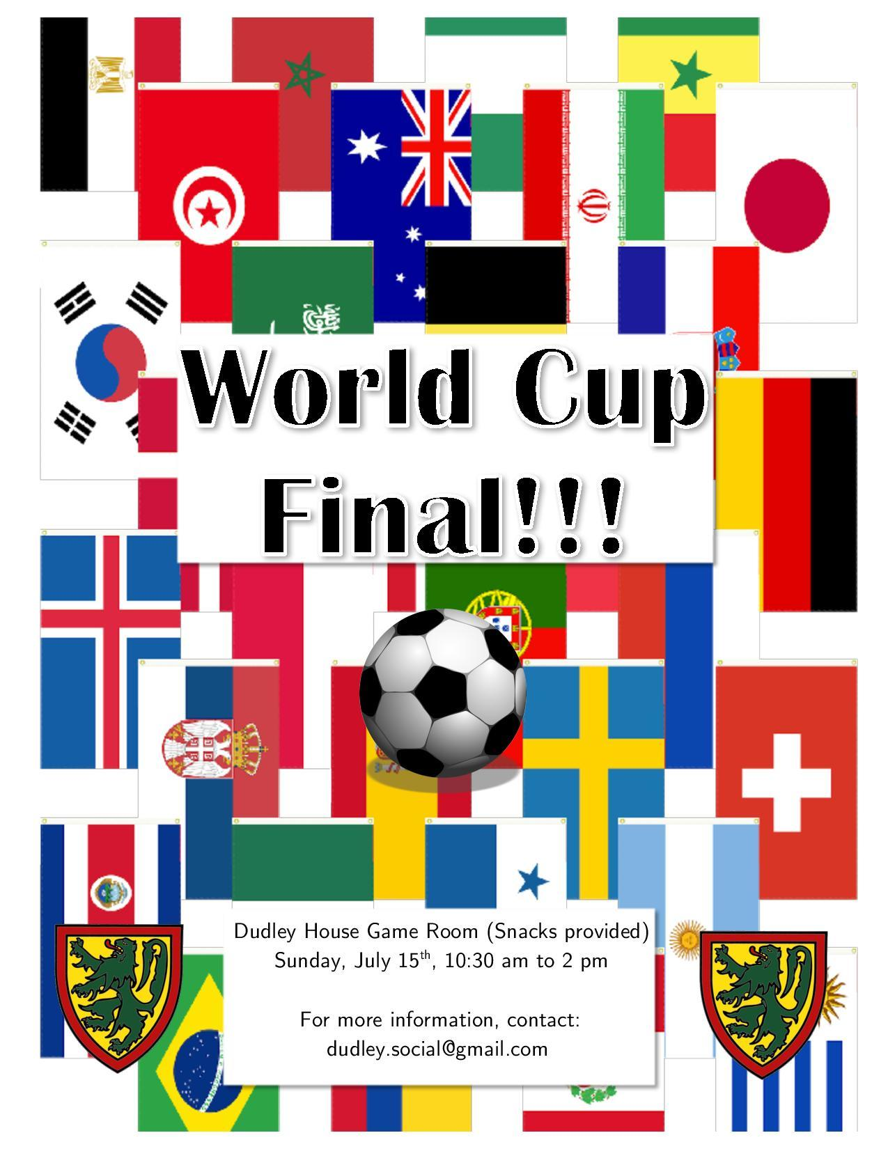 World Cup Final Party!!