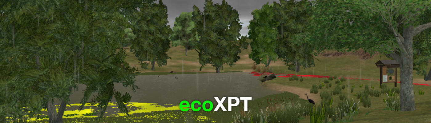 Image of pond and forest from virtual world.