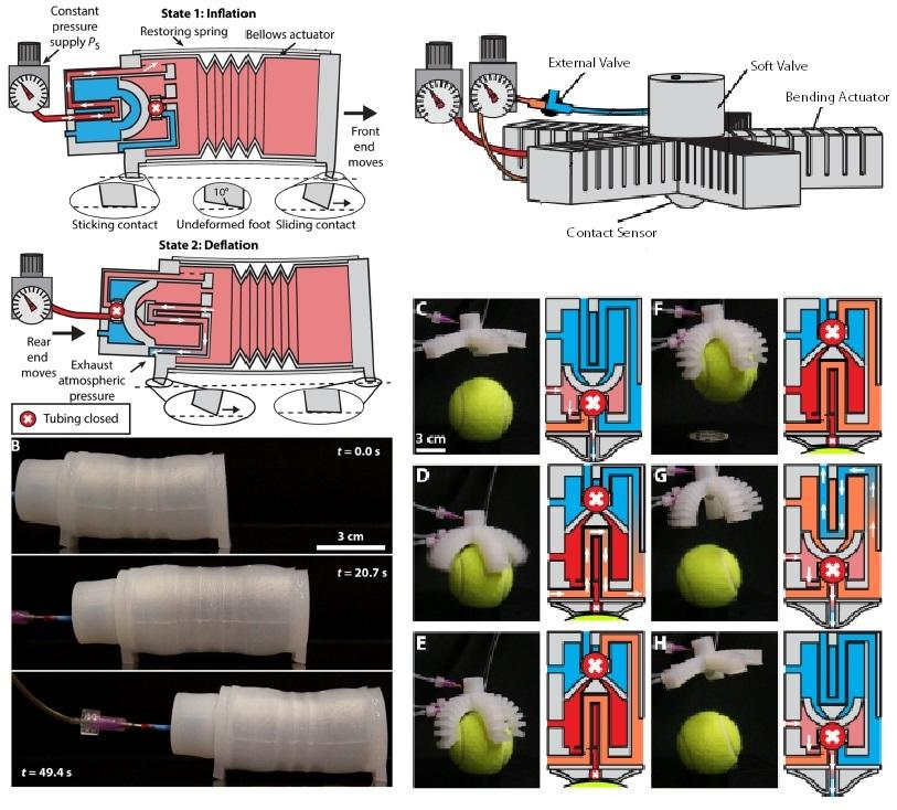 Soft Robotics | Whitesides Research Group