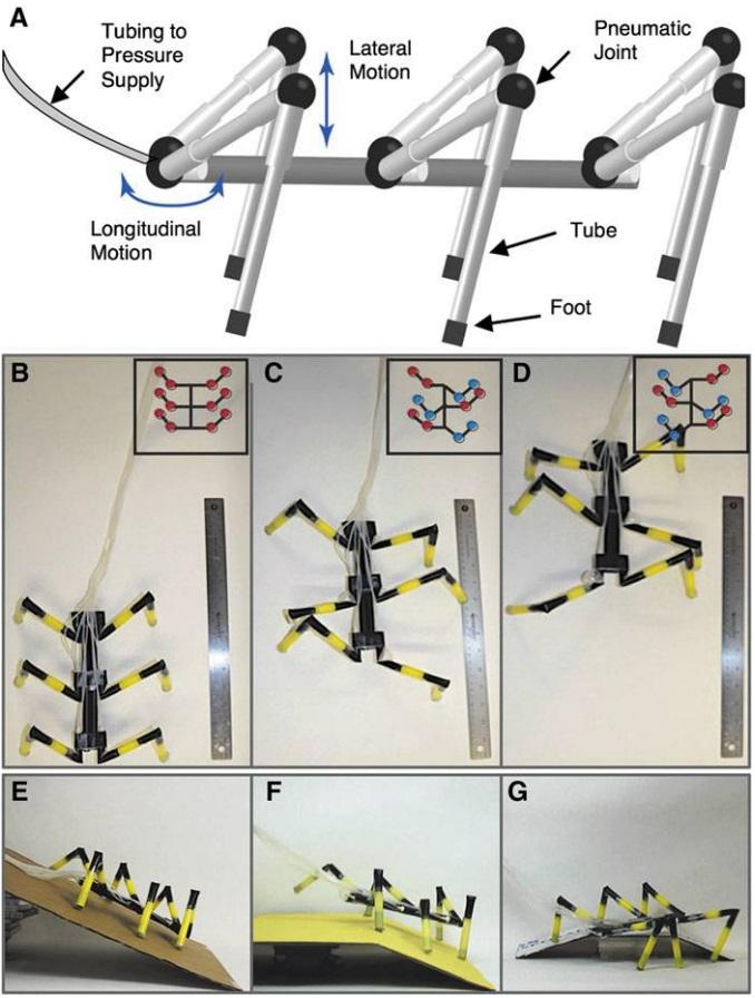 Soft Robotics | Whitesides Research Group