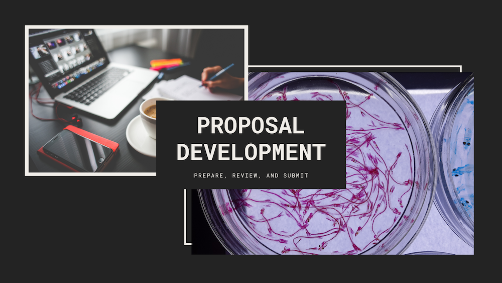 Click to see info on Proposal Development