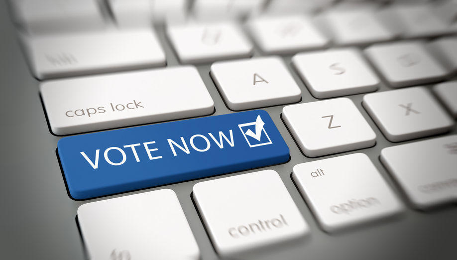 Vote Now! (Stock Image courtesy of www.HarvardScholar.org)