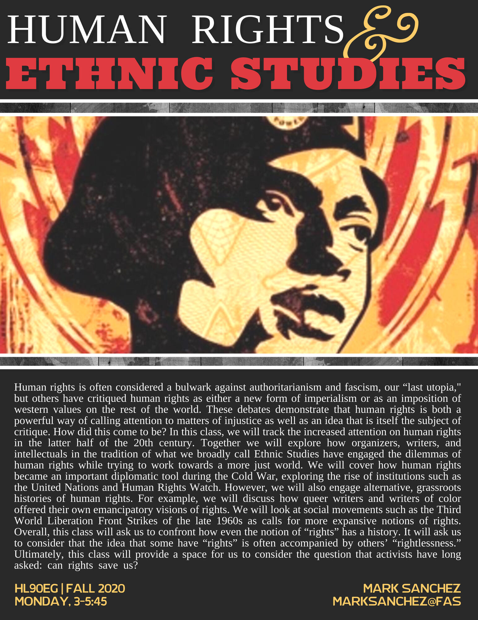 Human Rights and Ethnic Studies