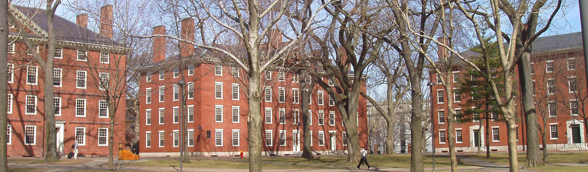 Harvard Yard dorms and leafless trees